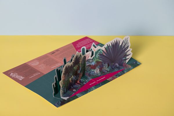 Custom 3D pop up mailers with Newton Print