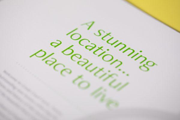 Green spot colour pantone print