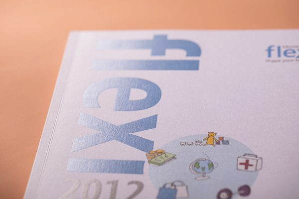 Spot UV Index tabbed brochure printing