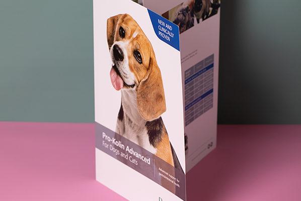 Roll fold leaflets