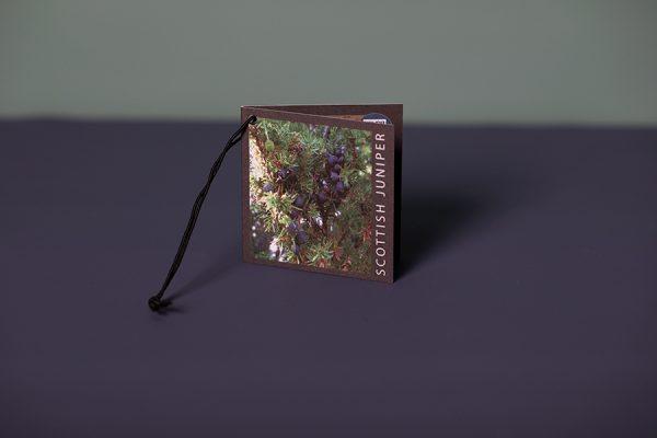 Branded swing tag printing - Badvo Gin
