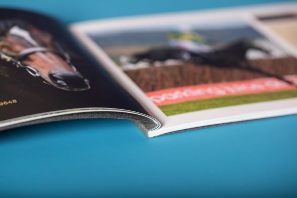 Yorton Foil Blocked Perfect Bound Brochure Printing with Gmund GF Smith cover
