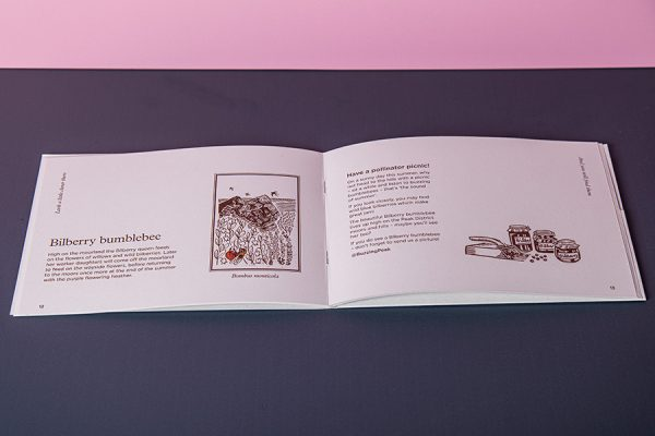 Bumblebee Trust Pocket Brochure on Recycled Paper