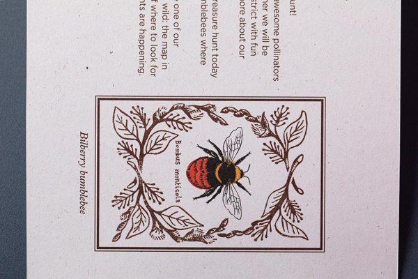 Bumblebee Trust Die Cut Pocket Brochure on Recycled Paper