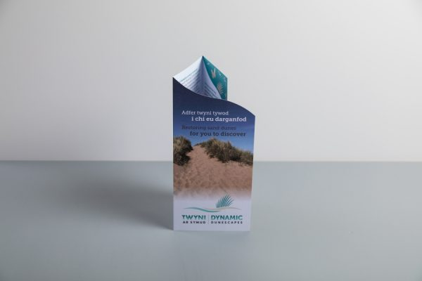 Dynamic Dunescapes die-cut and folded leaflet printing