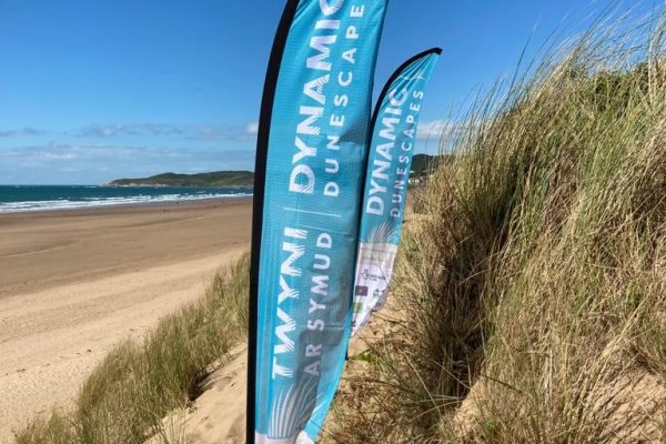 Dynamic Dunescapes printed beach flag for events