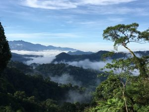 View over Khe Nuoc Trong and Bac Huong Hoa Nature Reserve. Credit Viet Nature Conservation Centre and Pham Tuan Anh