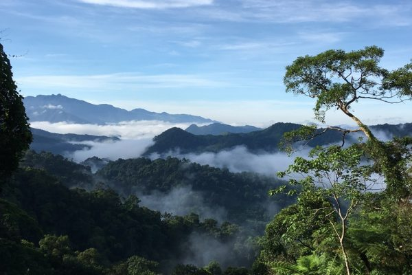 Carbon Balanced Printers - View over Khe Nuoc Trong and Bac Huong Hoa Nature Reserve. Credit Viet Nature Conservation Centre and Pham Tuan Anh